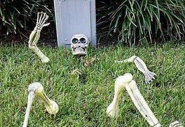 Scopri in pochi minuti perché il Banco dei pegni è passato a miglior vita da tempo e come portare fiori sulla sua tomba ti frutterà più di quanto credevi.